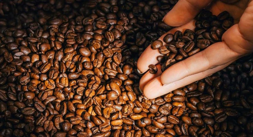 11 Best Sumatra Coffee Beans To Buy In 2021